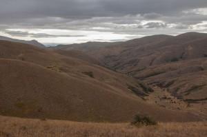 Dunstan Range